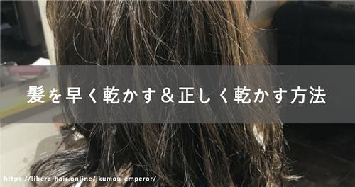 髪を早く乾かす&正しくかわかす方法とは?